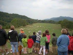 El Millor Turisme Familiar El Gaudireu A Osona