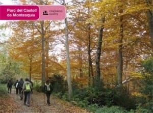 Marxa Nòrdica Pel Parc Del Castell De Montesquiu
