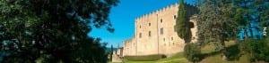 Encara No Tens Plans Per Aquest Estiu? No Et Perdis Les Activitats Que S'organitzen Al Parc Natural Del Castell De Montesquiu!