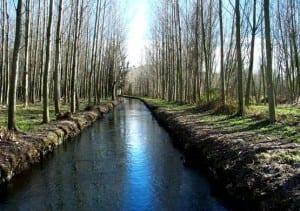 Connecta Amb La Natura Amb El GR 210 Camí Vora El Ter